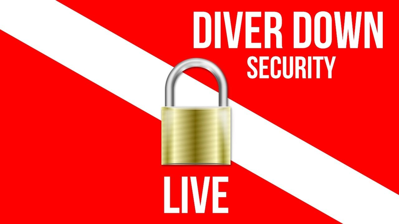 Gnscroyrryajf2fapvgu diver down security widescreen