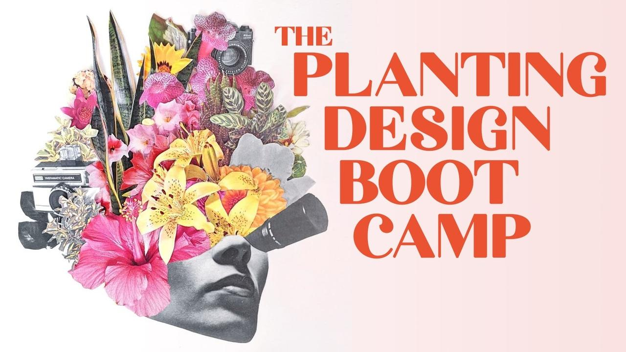 Jrmxmbfirhmis7emvyqn planting design boot camp cover art