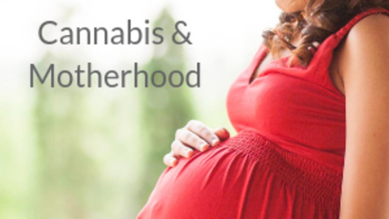 U7yifhlgshalxpqjqp2t cannabis motherhood