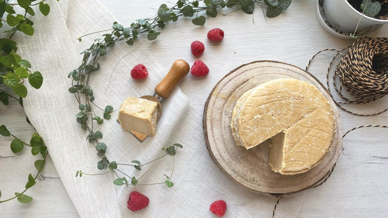 Wzesmonatci3gflnsvbc melt vegan online cheesemaking course crackle cheese parmesan style cheese