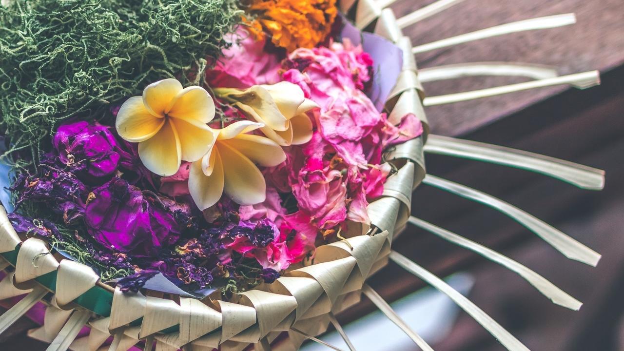 Hk9m06eaqtlqet7kduh0 shallow focus photography of multicolored floral decor 994516
