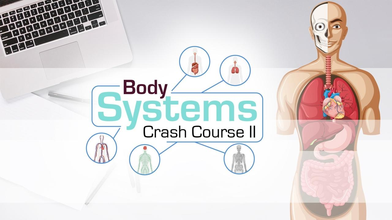 Ov0z39esvcues4jifnjq body crash course ii