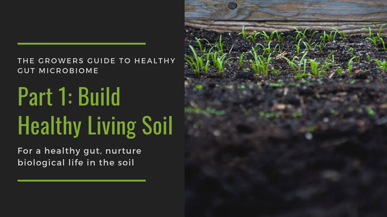 A Growers Guide to Connecting Healthy Soil and Healthy Gut