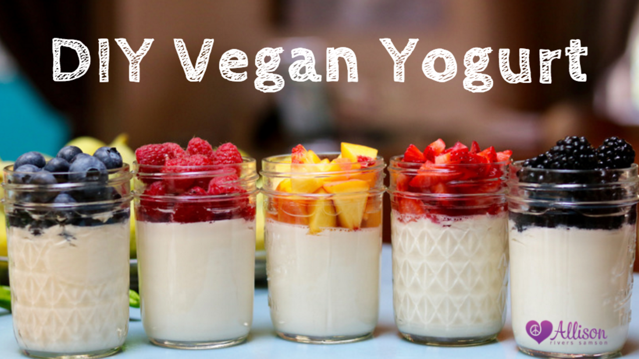 Allisons holistic self care blog ive been on a quest for my favorite vegan yogurt ever since wildwood stopped offering theirs what i loved about it was that they used all organic solutioingenieria Choice Image