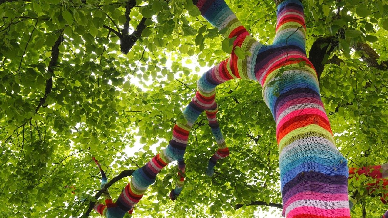 tree with trunk wrapped in knitting