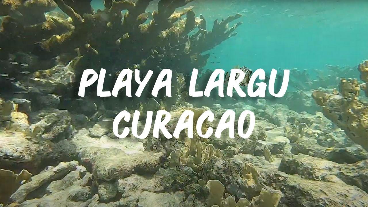 Playa Largu, Curacao