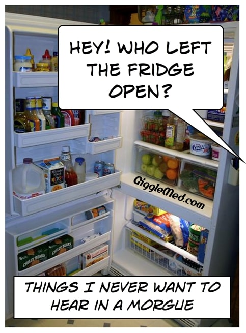 Morgue Comic: Who Left The Fridge Open?