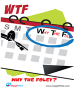 Infection control humor campaign - WTF? Why The Foley?