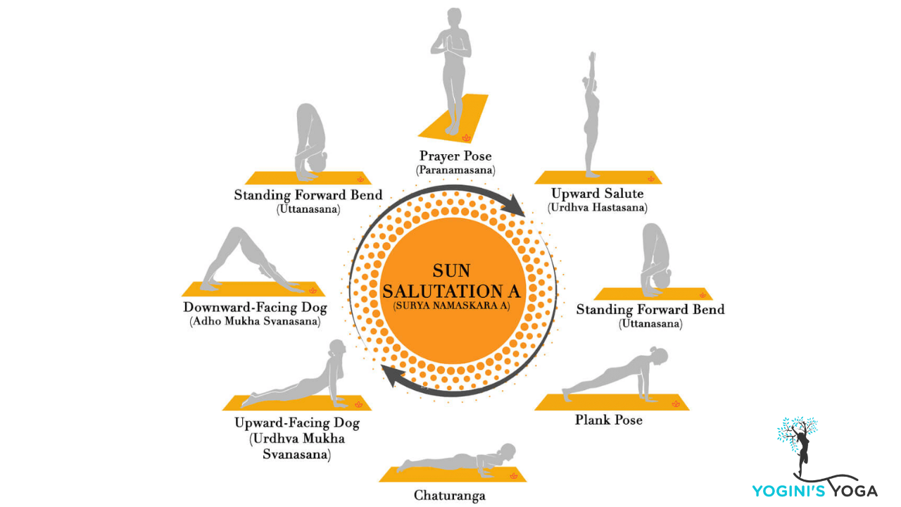 Sun Salutation Time