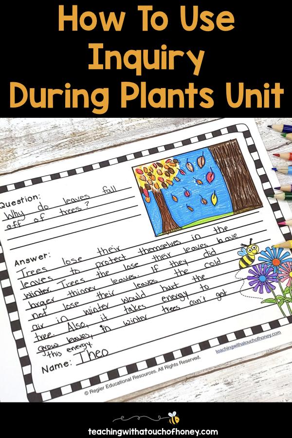 plant-inquiry