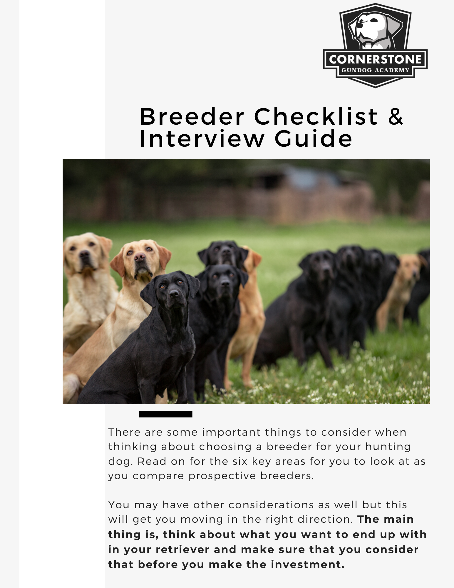 How to Choose a Good Breeder