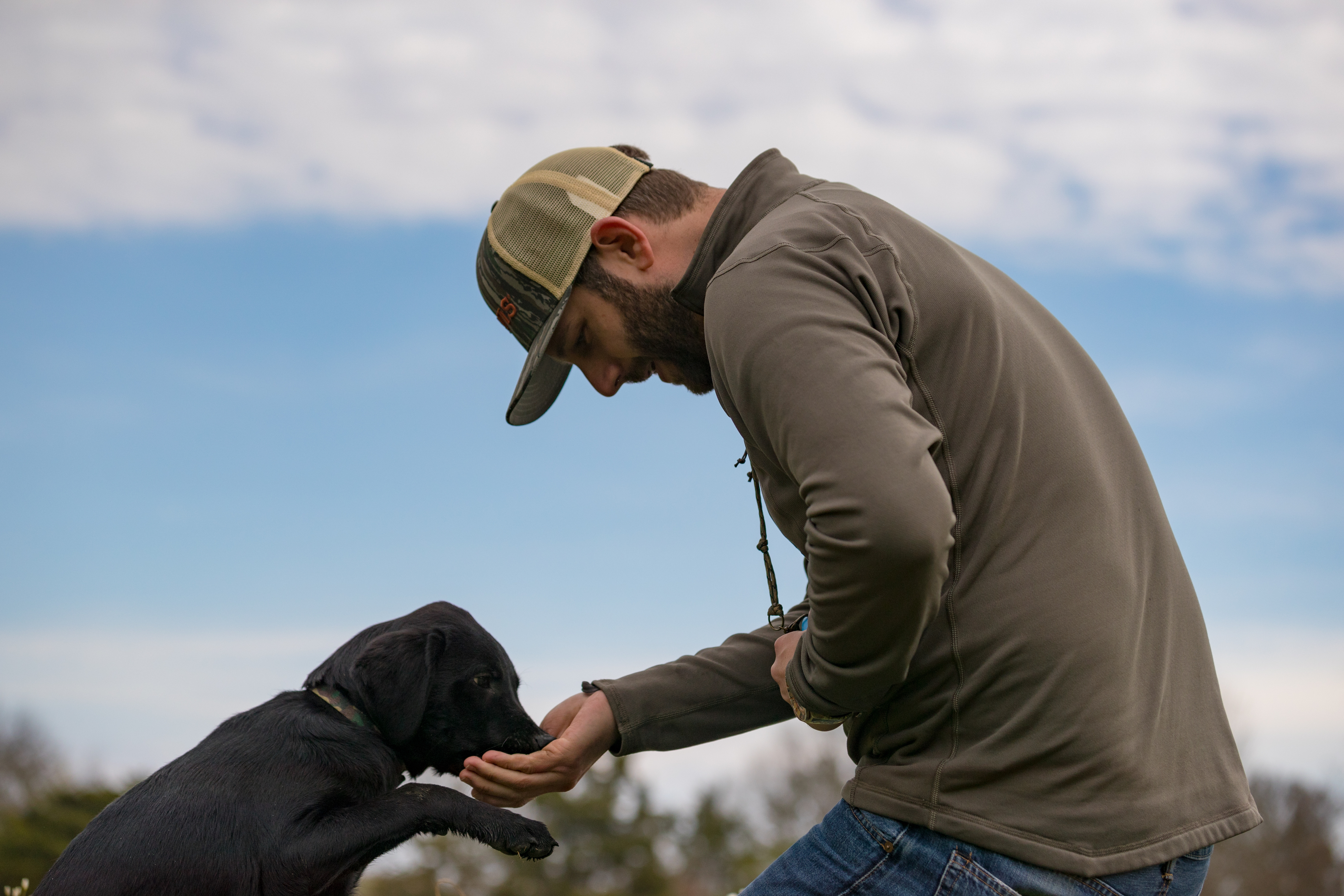 How to train a duck dog puppy