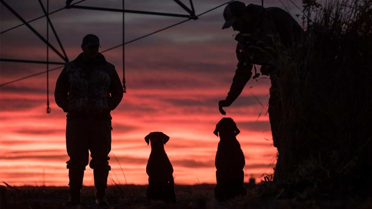dca21a9aac7aa How Three Gundog Trainers Created the Ultimate Online Learning Resource