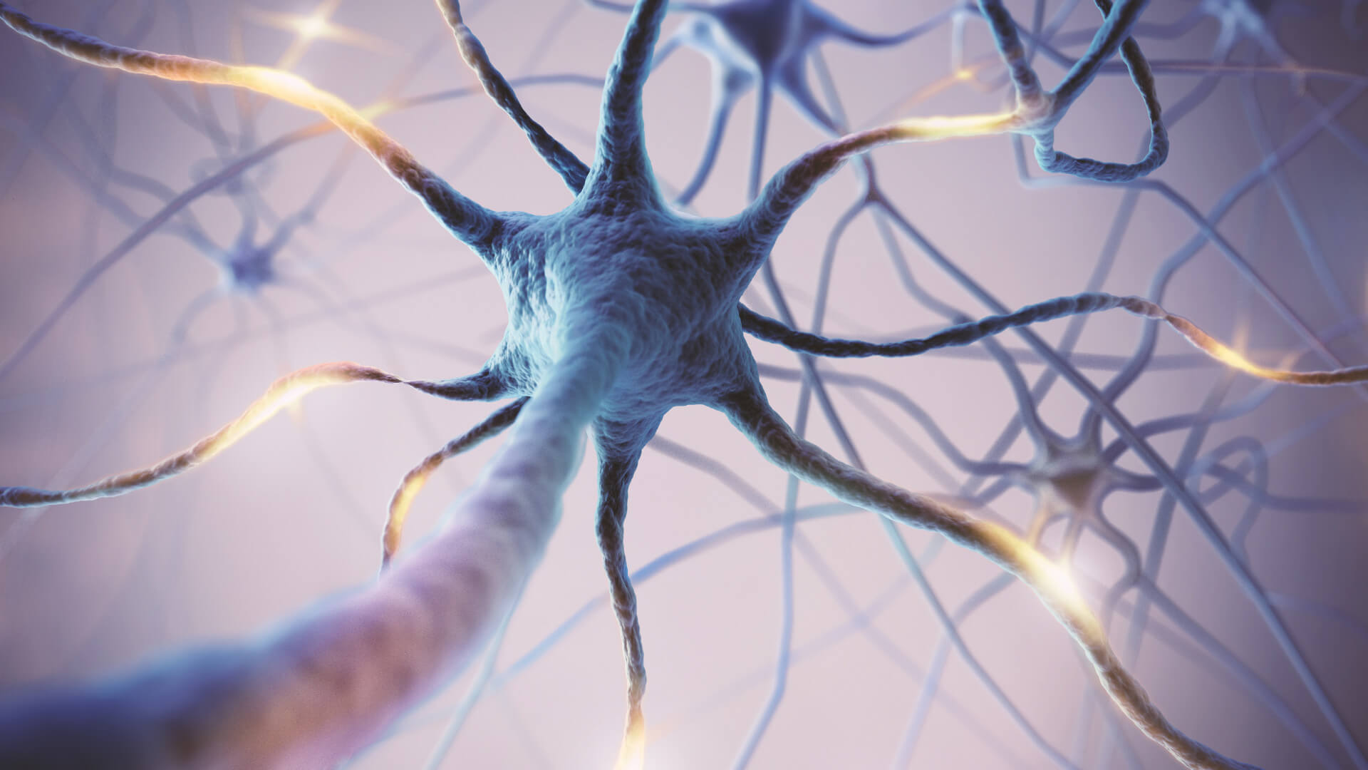 MSG can potentially disrupt neurons and might have adverse effects on behavior.