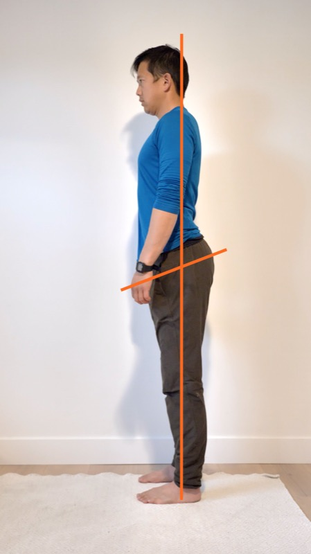 anterior posterior core muscle balance