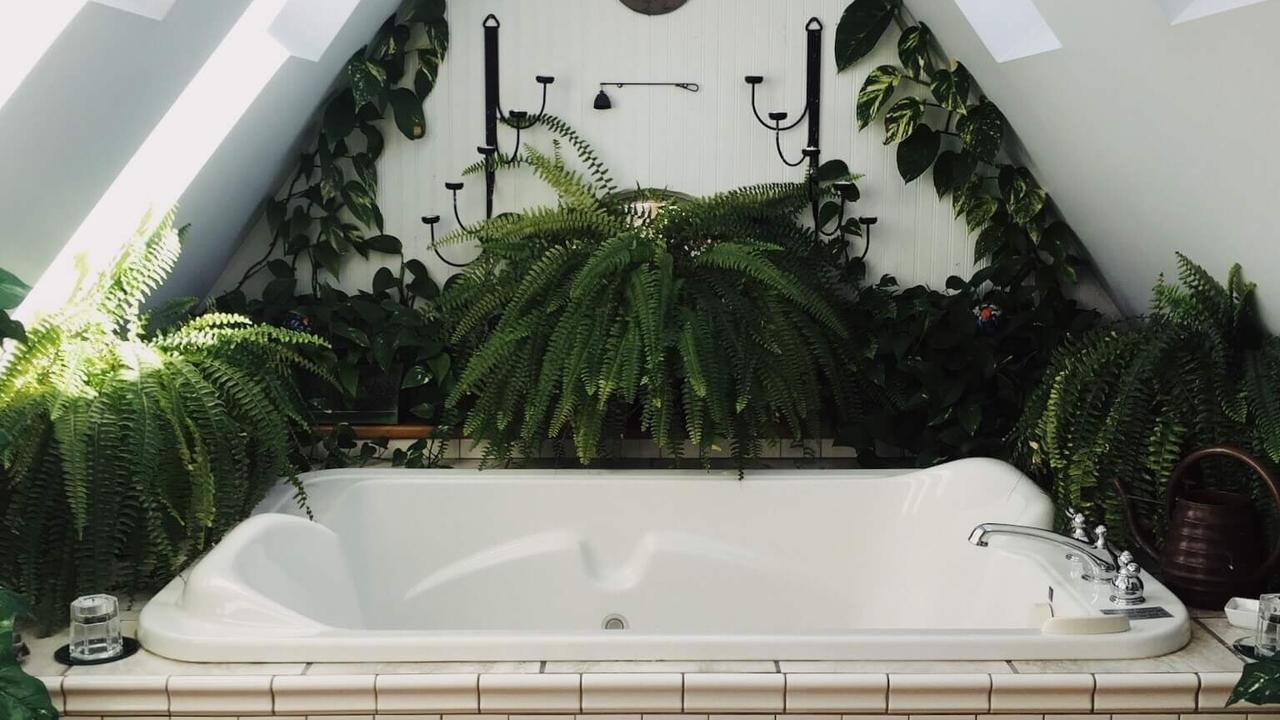 Cleaning Tips to Have A Lead Free Bathtub | Nontoxic Living