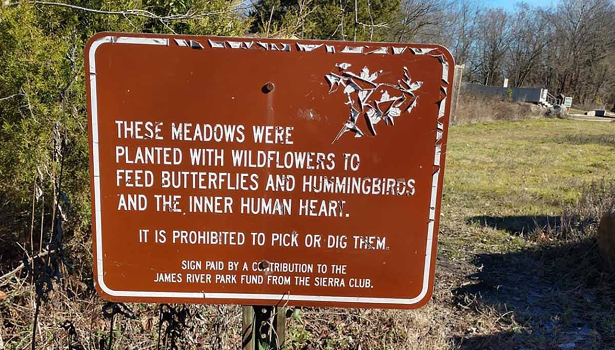 save the pollinators sign don't pick flowers