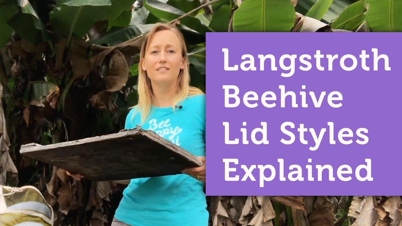 langstroth style beehive lids options explained