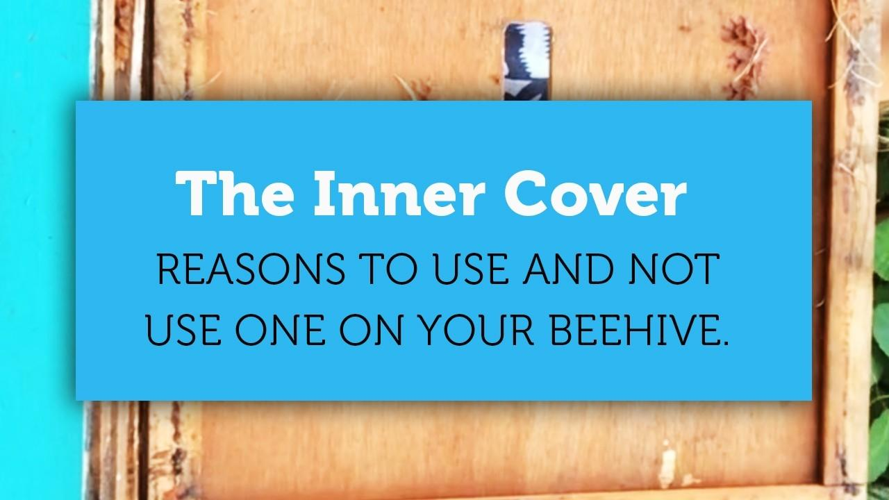 the inner cover beekeeping blog title page image