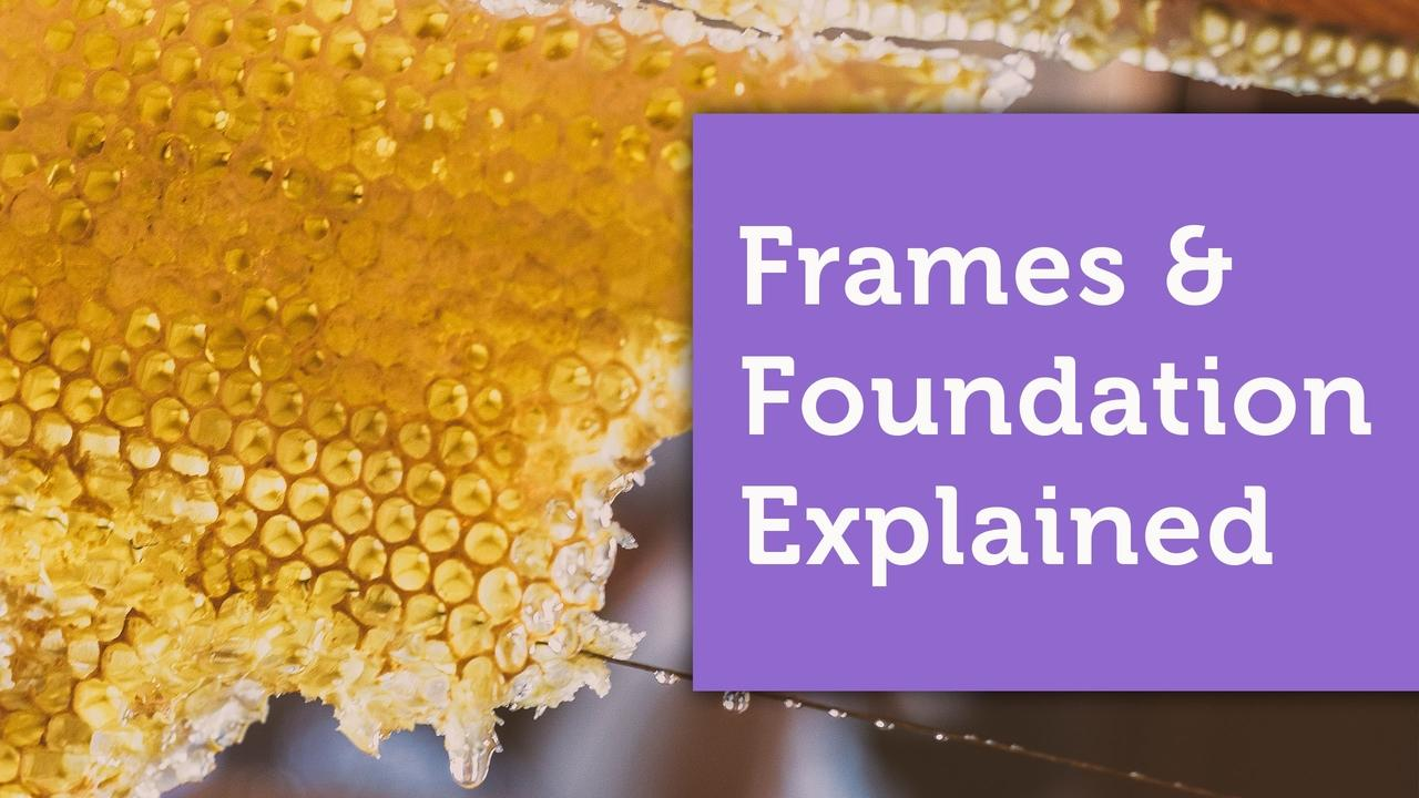 langstroth beehive frames and foundation