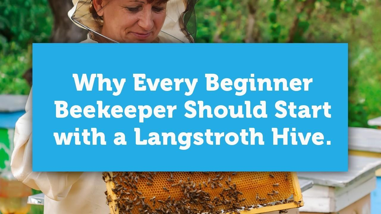 why every beginner beekeeper should start with a langstroth blog cover image