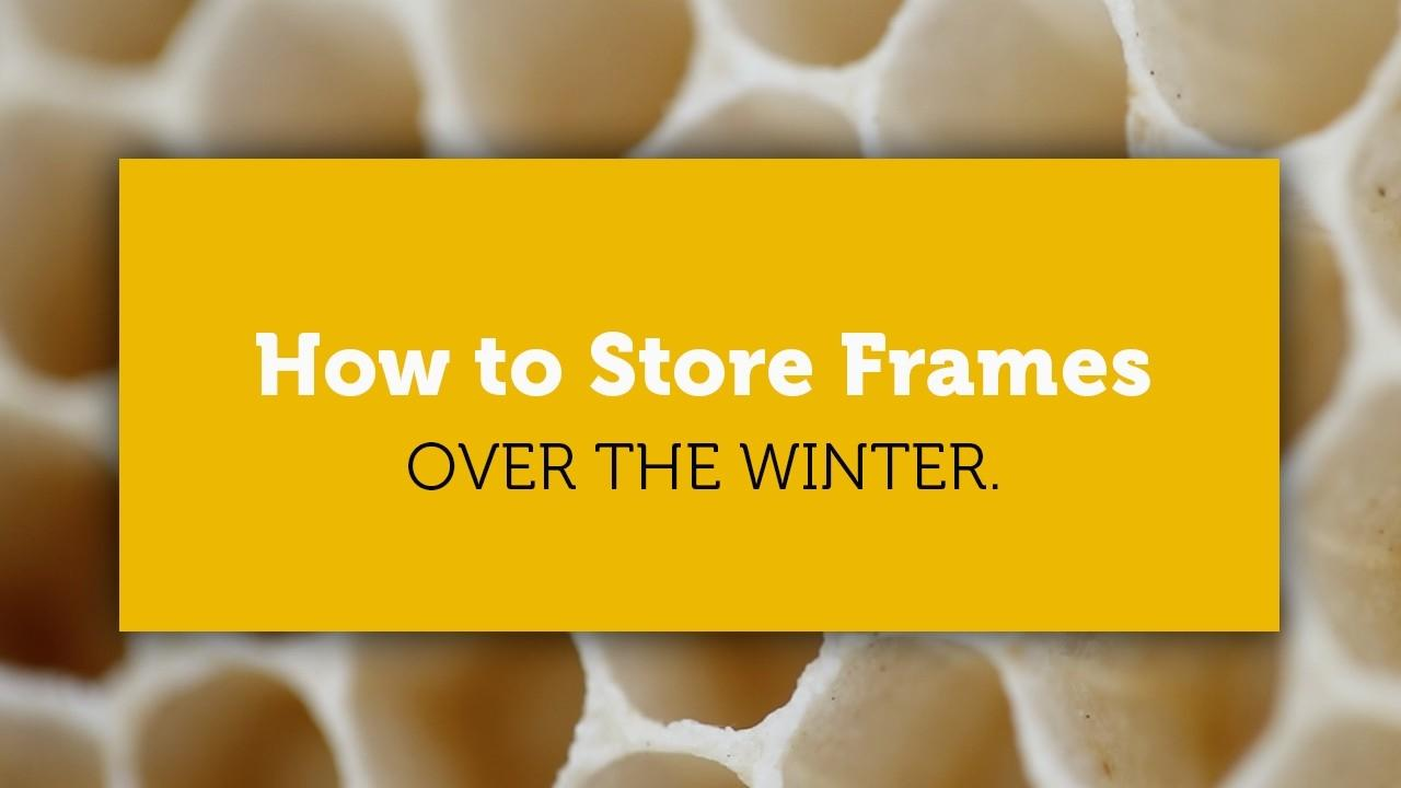 how to store frames of honey comb over the winter title image