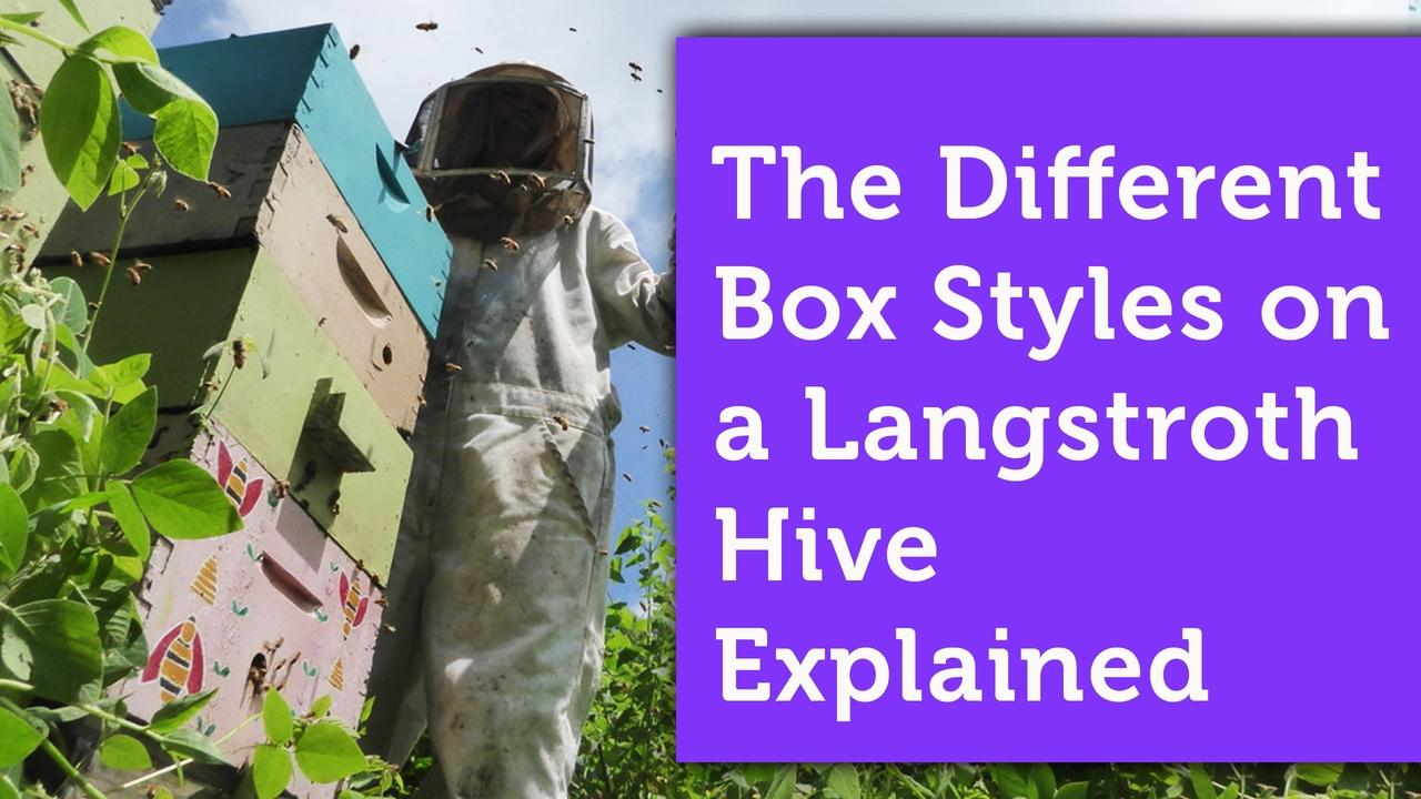 langstroth hive supers and other boxes