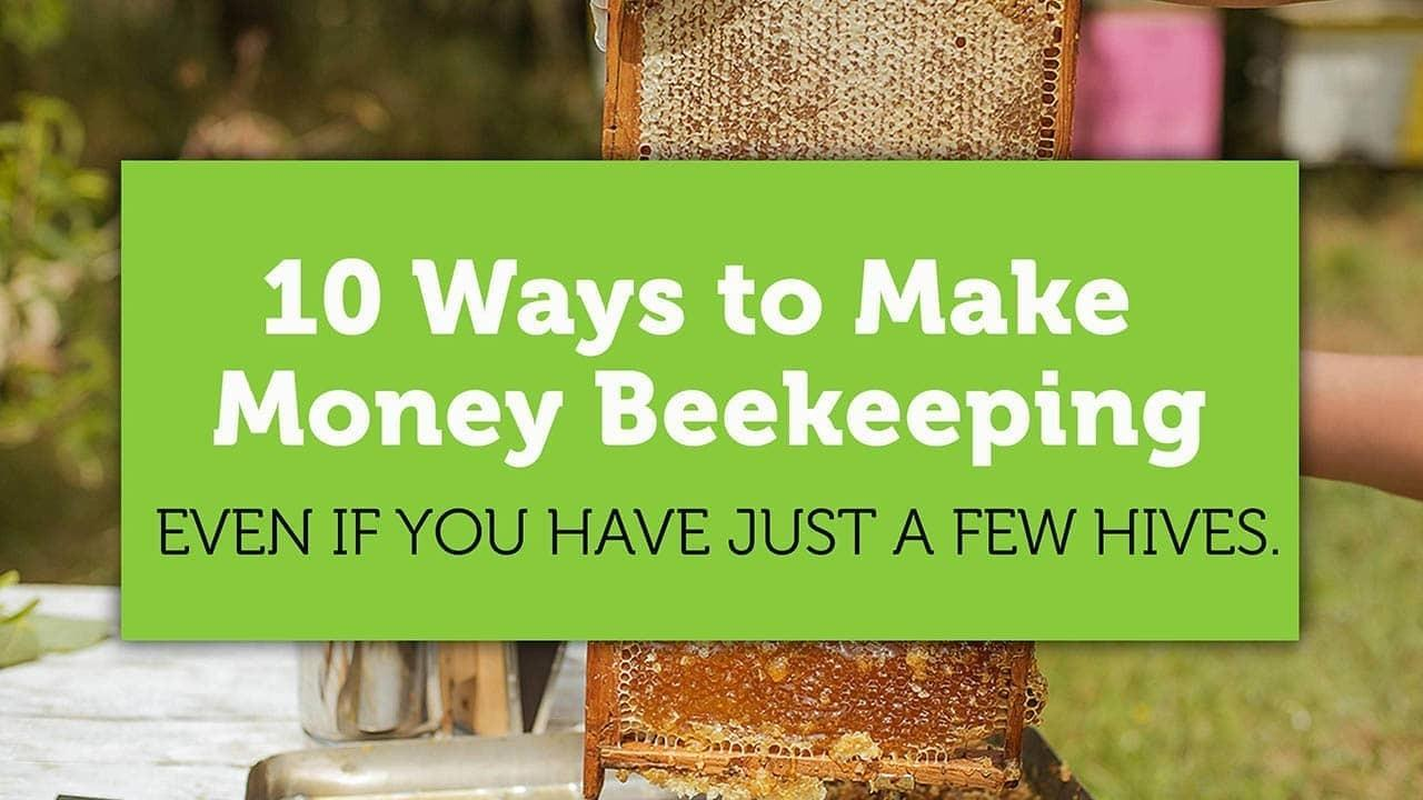 10 ways to make money beekeeping blog title image