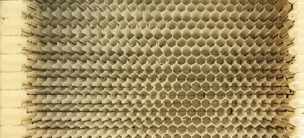 flow hive foundation
