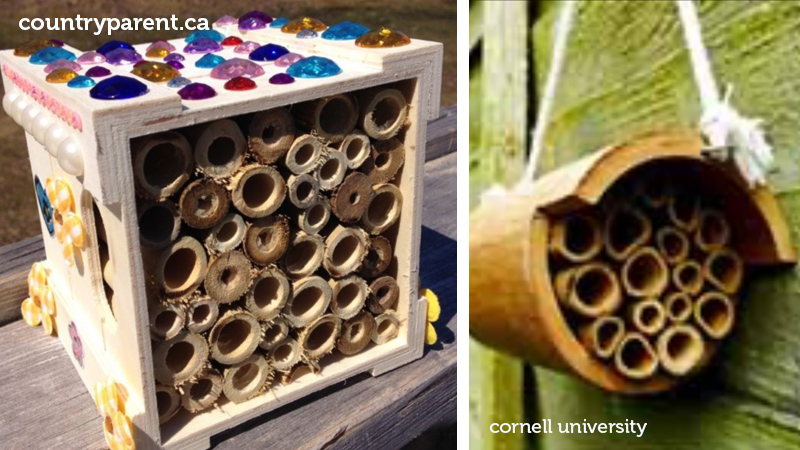 mason bee hotel design ideas