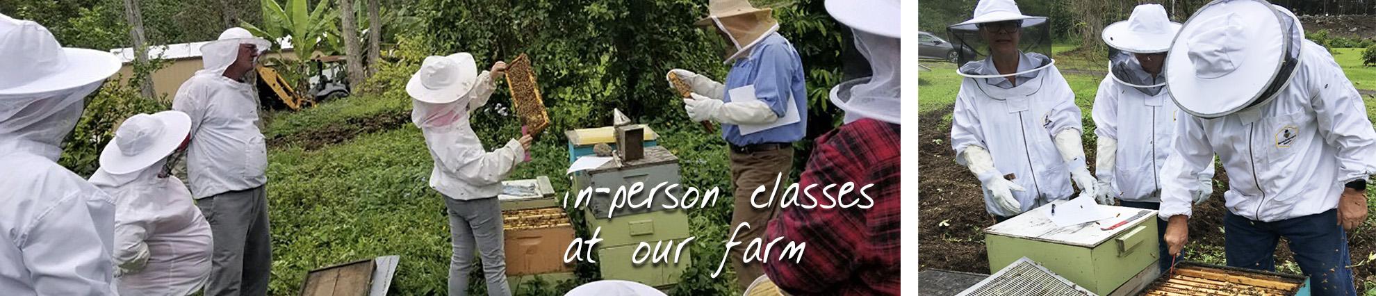 beekeeping class on Big Island of hawaii