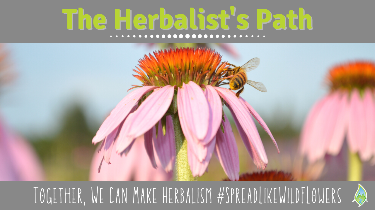 Herbal Podcast Learn Herbalism Online Classes and Herbal Medicine Making Education