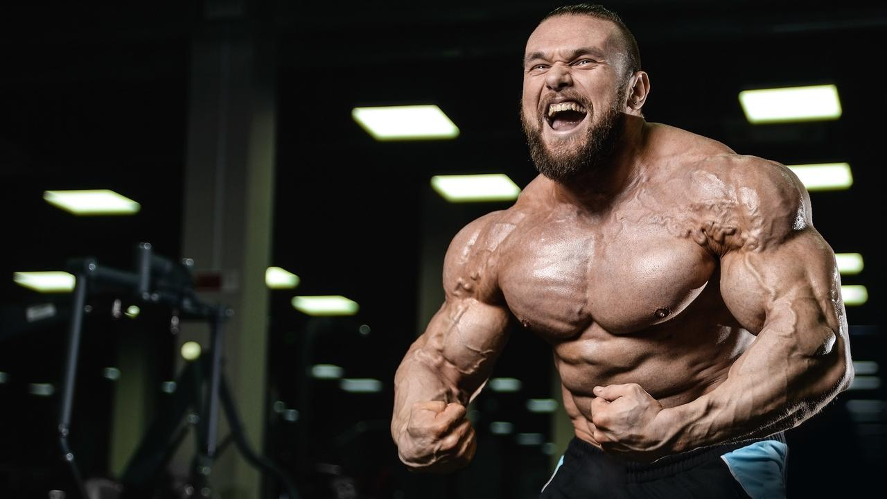 We Have Bodybuilders Crossfit Athletes Powerlifters Olympic Lifters And Strongman Just To Name The Most Popular Ones Off Top Of
