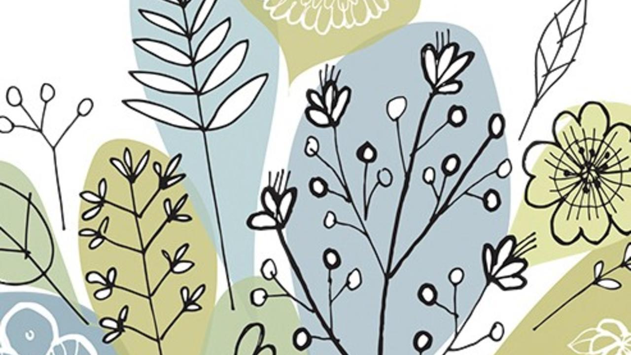 illustration of plants