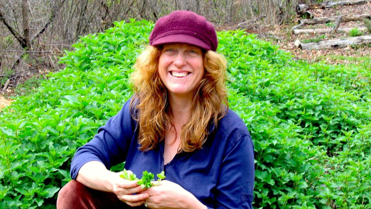 Corinna Wood, founder of Red Moon Herbs, with stinging nettle patch for edible and medicinal uses of the herb