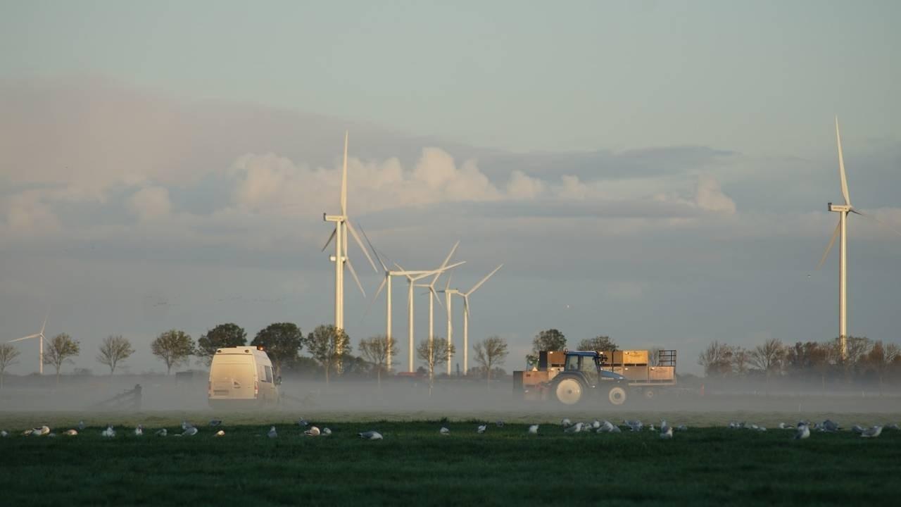SDG 12 • Verantwoorde productie en consumptie • photo by Carolien van Oijen