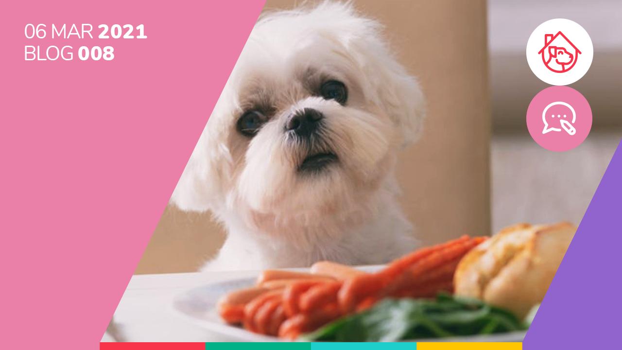 Diez alimentos que son un riesgo para la salud de los perros.