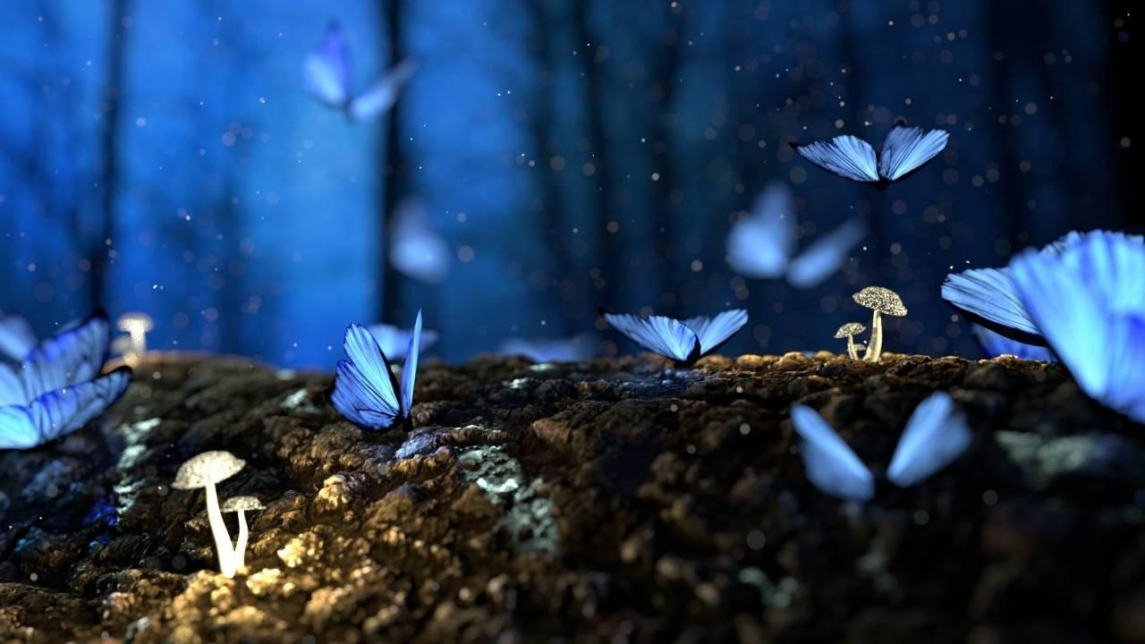 Blue butterflies taking flight from the woodland undergrowth and fungi - representing rebirth, spiritual rebirth and new growth