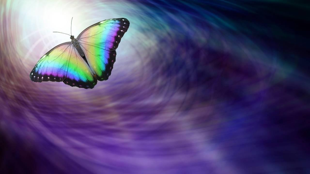 A photo of a butterfly on a purple background with purple being a highly spiritual colour and the butterfly representing the transformation with a spiritual awakening