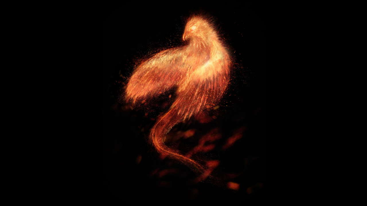The Phoenix Rising - risen from the ashes - spiritual awakening