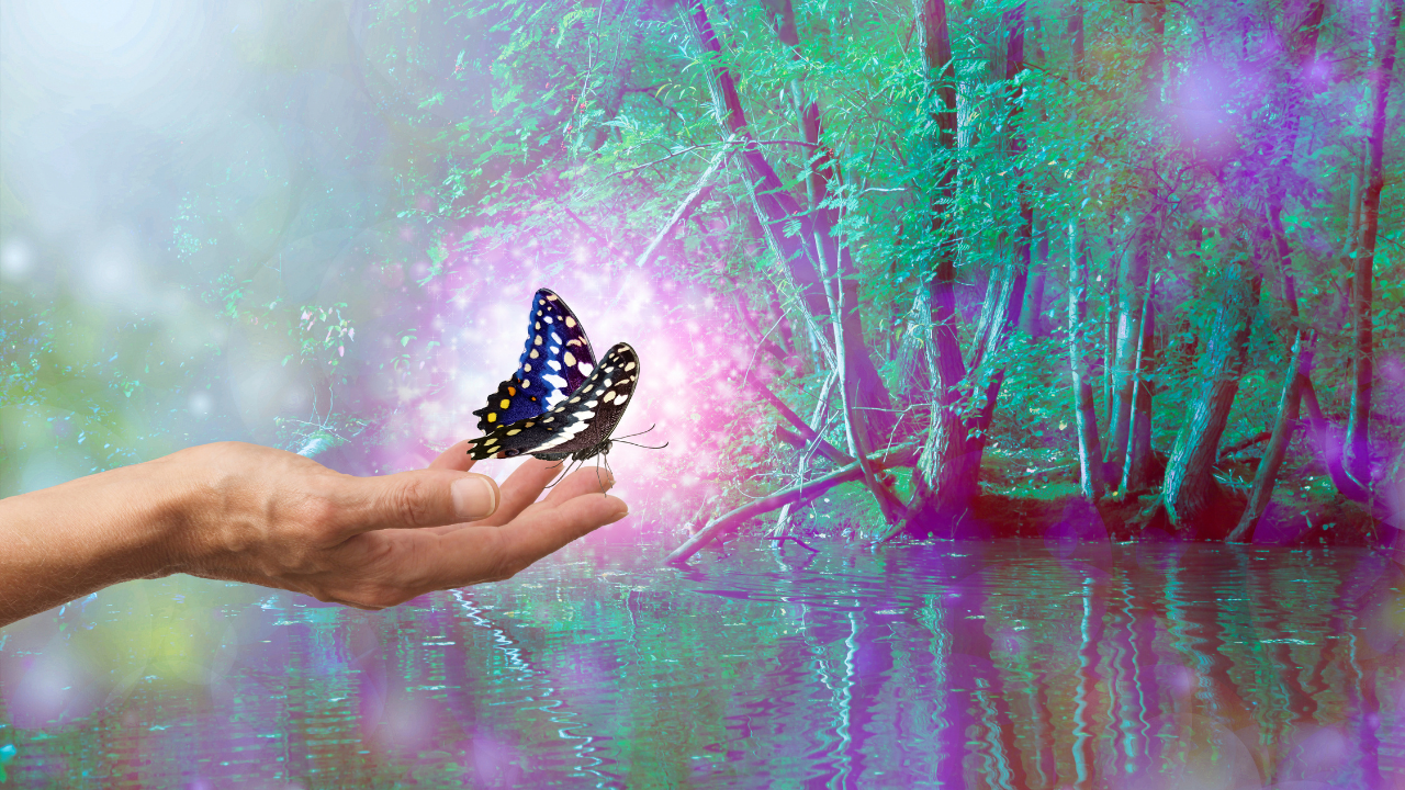 Magical sparkling butterfly release - hand holds a pink glowing butterfly in ethereal forest - symbolising surrender and the art of letting go of resistance to who we are and our truth
