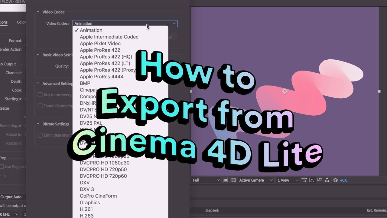 How to export images and video from Cinema 4D Lite