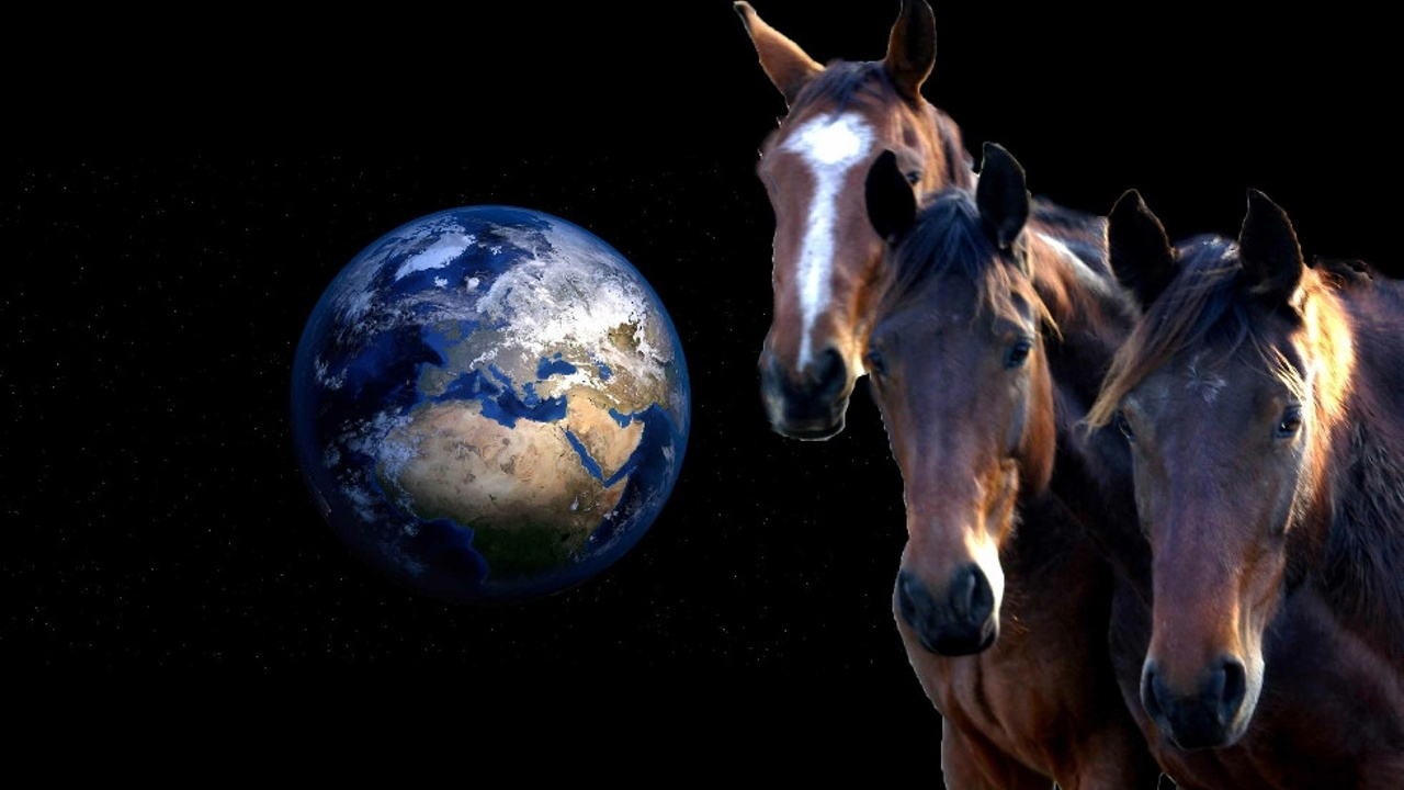 Equiculture - You and your horses CAN help to save the planet
