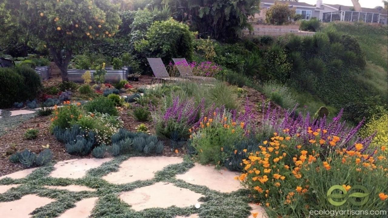 San Diego Landscaping Design And Installation Blog Ecology Artisans