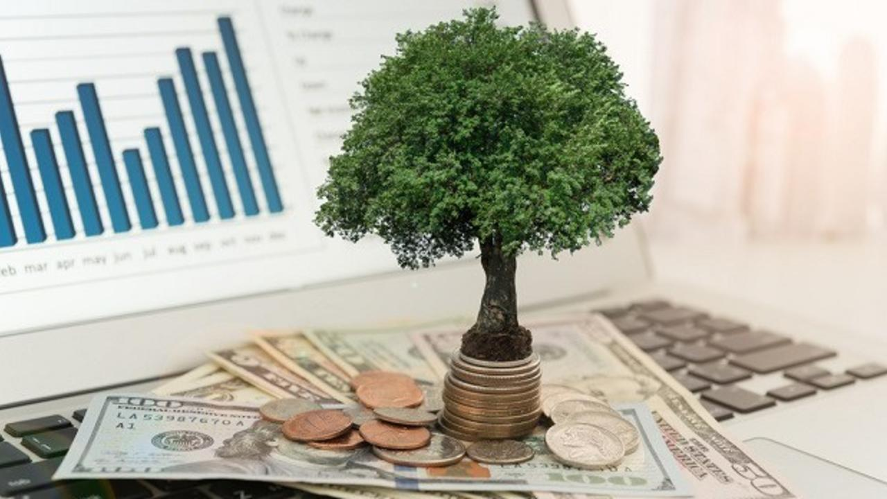 Which Stocks Pay Dividends? Small Cap vs Large Cap for ...