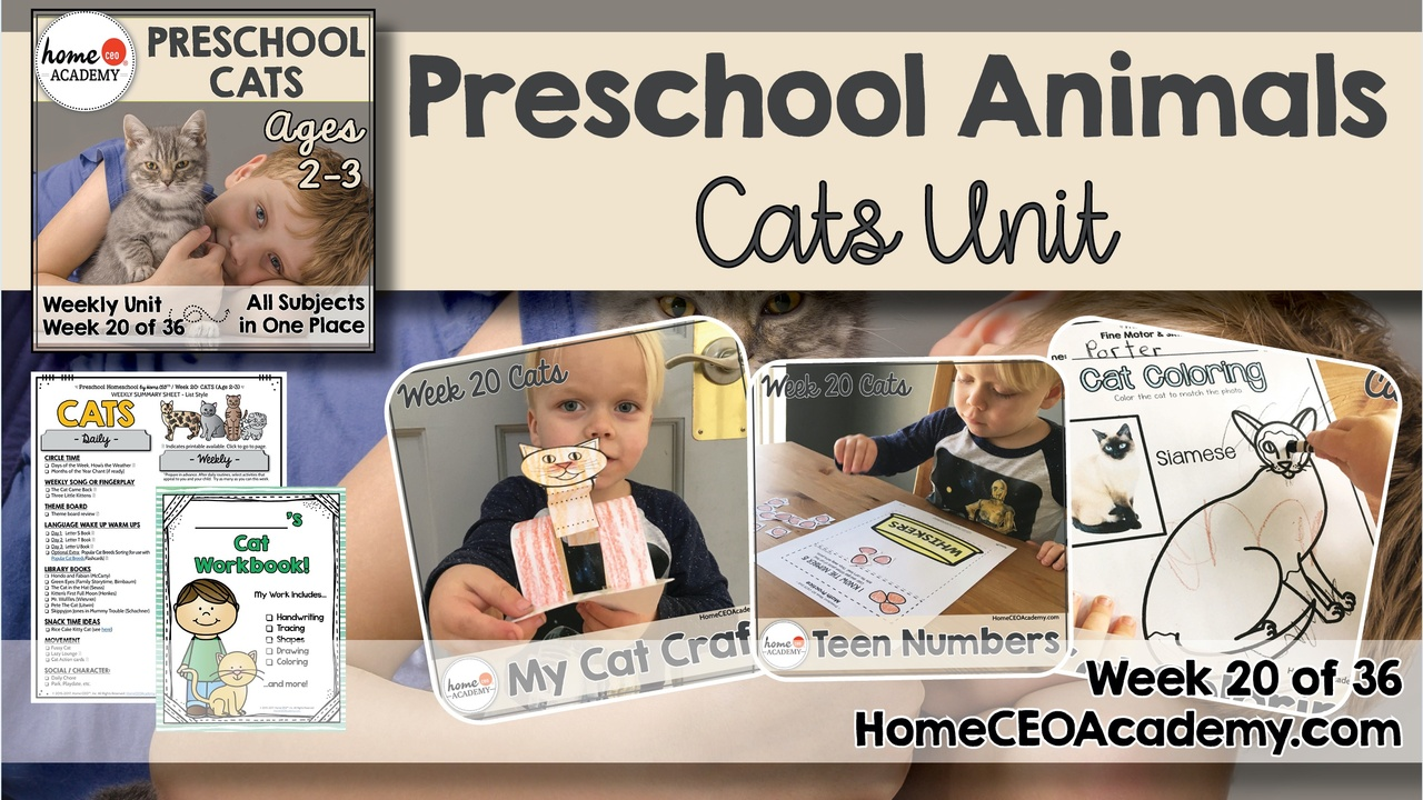 Compilation of images depicting pages and activities in the cats themed week of the Home CEO Academy preschool homeschool curriculum Animals Unit.