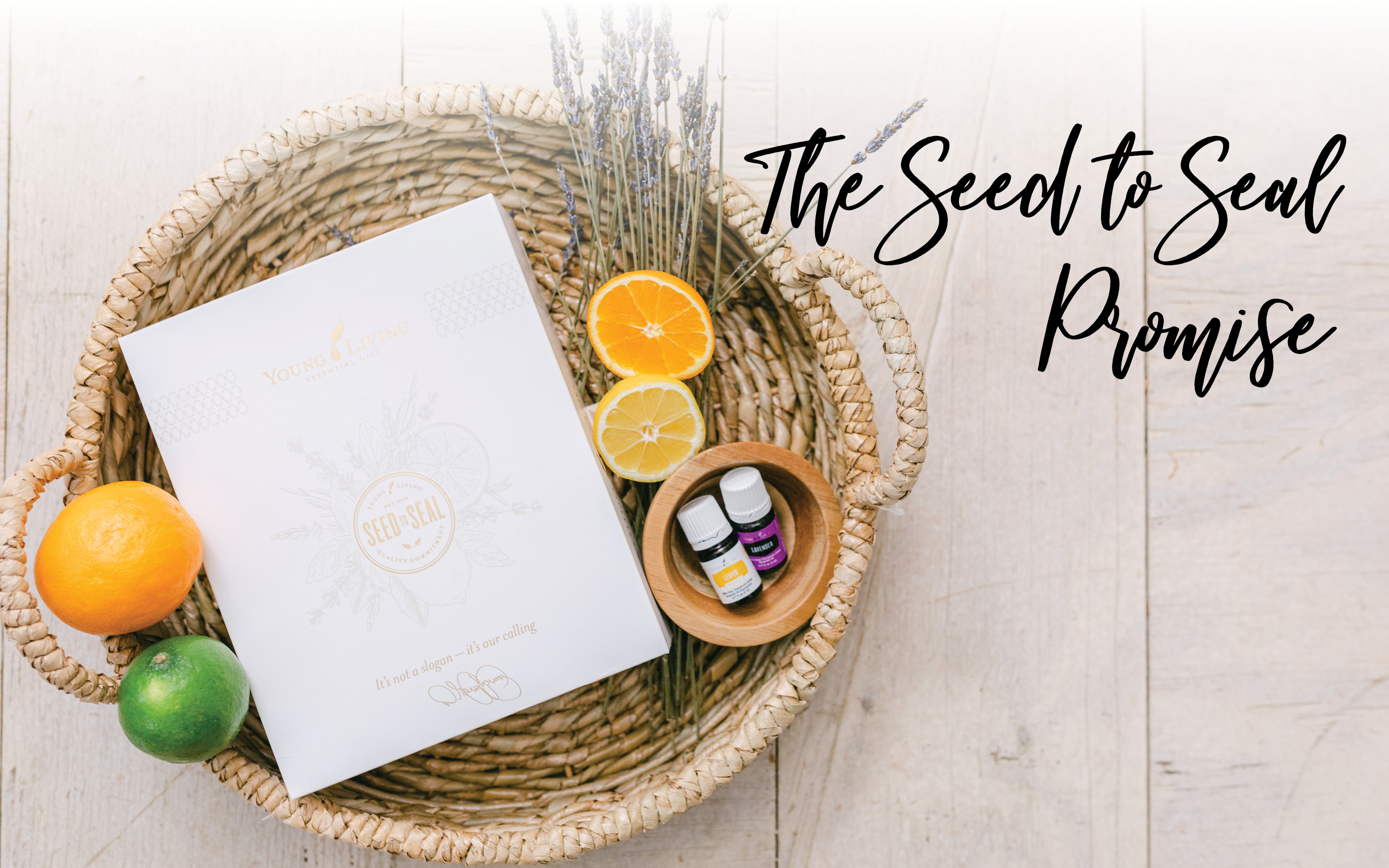 Seed to seal. essential oils 101