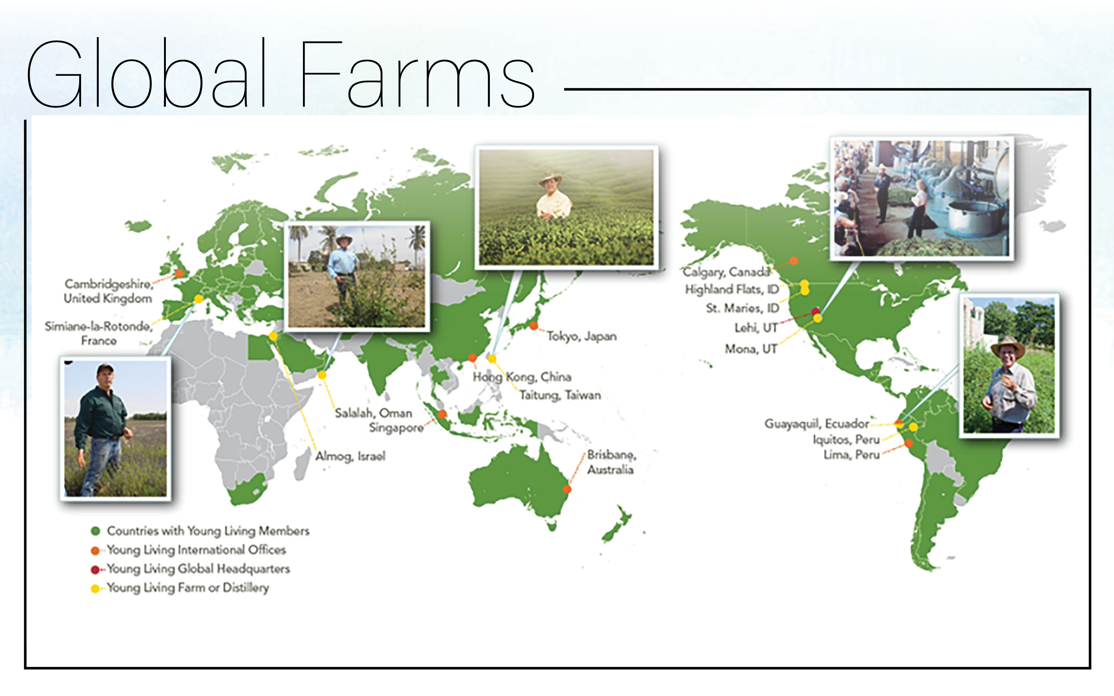 Young living farms are everywhere
