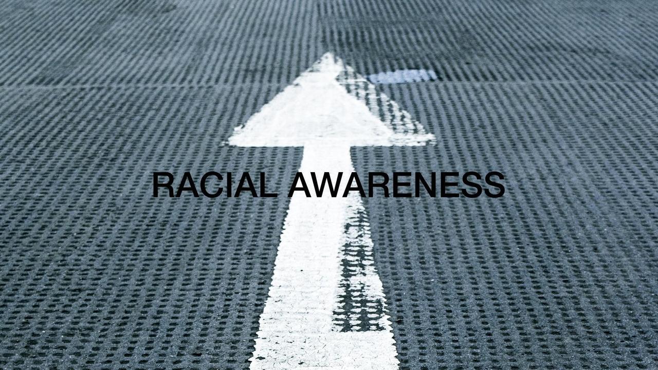 7afui332saupliqbflhs racial awareness