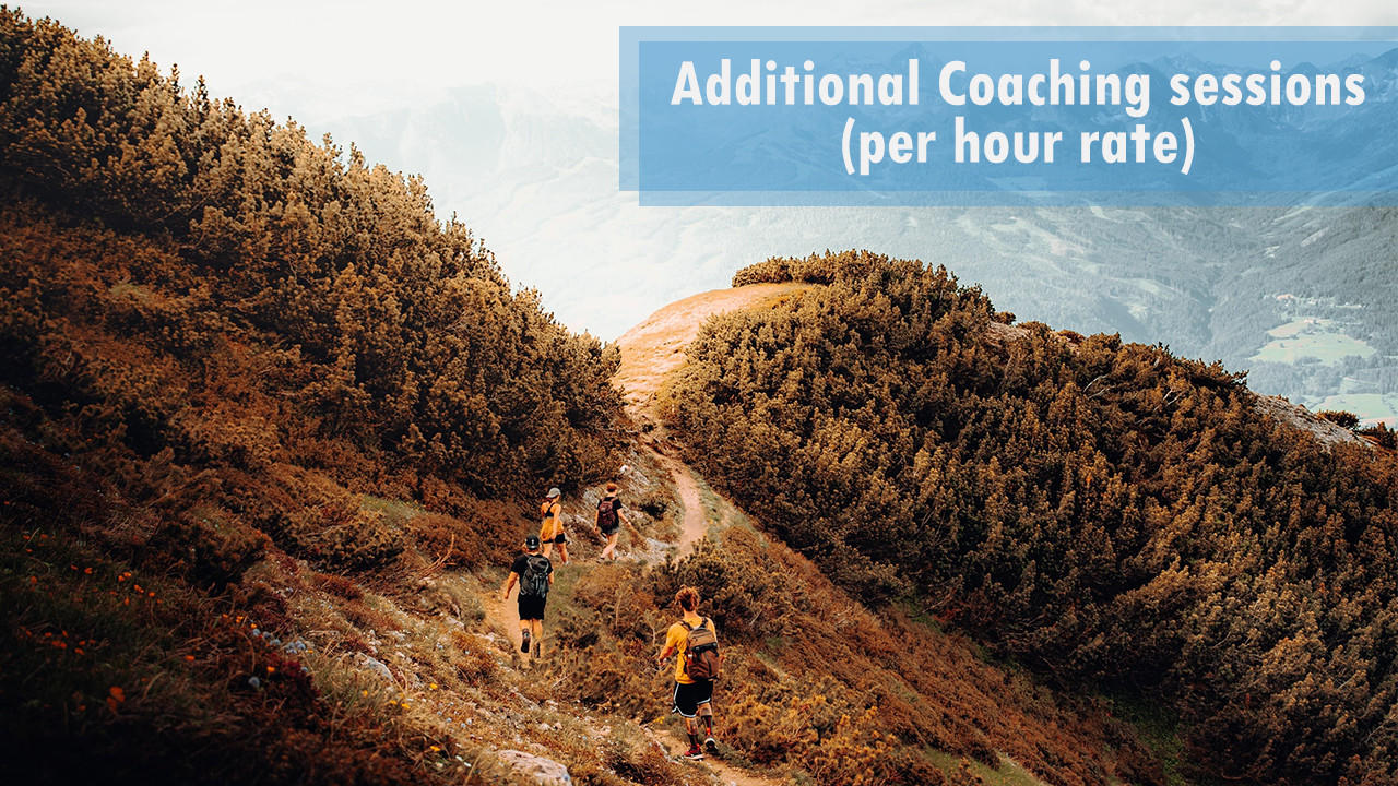 Ziifedt2q1cf1h6a26di dec package additional coaching sessions per hour rate